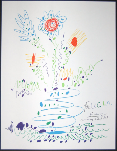 Picasso - Flowers for UCLA (1961)